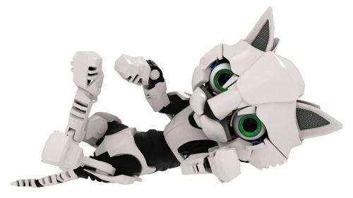 chaton robot.jpg