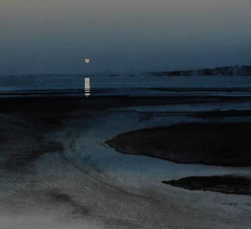 clair de lune.jpg