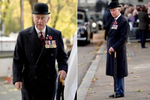 Le-prince-Charles-so-British-avec-son-chapeau-melon-et-son-parapluie (1).jpg
