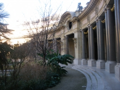 Patio_Petit_Palais.JPG