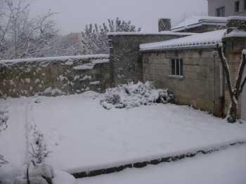 jardin d'hiver.JPG